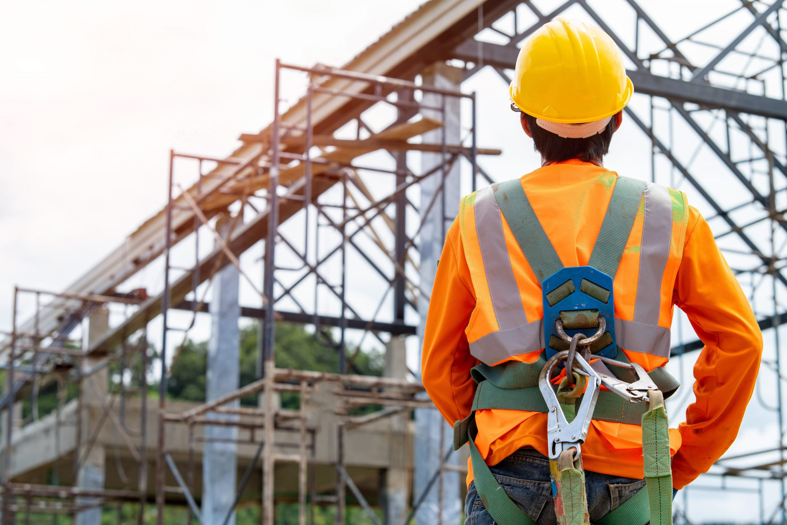 fall protection system
